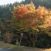 観音峰 ~紅色の帯が山肌に広がり。