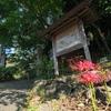 彼岸花が見頃の「浄慶寺(川崎市)」に行って来た。