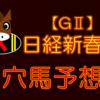 【GⅡ】日経新春杯 結果