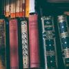 ボロボロになるまで読み聞かせている子どもに読んであげたい絵本4選!