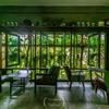 緑に囲まれた素敵なカフェですよ@Hideaway cafe