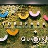 愛知県東浦イオンのトランポリンカフェ「TOBUPARA」さんでピョンピョンしてきた