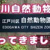 江戸川自然動物園ってこんな場所です!!