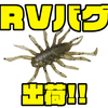 【ジャッカル】毎回即完の虫パターンワーム「RVバグ」通販サイト入荷!