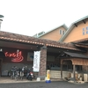 愛媛県松山市のお風呂巡り。「ていれぎの湯」で金色のお湯を堪能。愛犬と一緒に「わんわん温泉」も。