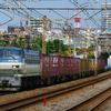 9月3日撮影 東海道線 平塚~大磯間 貨物列車撮影 5095ㇾ 2079ㇾ