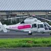 2019年8月26日(月) JA02EX JA37CA JA666D JA17ARなどが調布飛行場で見られた話