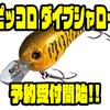 【EVERGREEN】清水盛三プロ監修スモールクランクの新モデル「ピッコロ ダイブシャロー」通販予約受付開始!