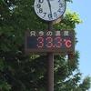 久々の3連休!気温34度の中滝野スズラン丘陵公園に行ってきました!