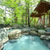 ひらゆの森は良い。濁り湯、そして硫黄臭、露天風呂は男湯7つ、女湯9つ。超大好きで超お勧めな温泉です。