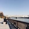 東京に行きたかったけど、やめました。