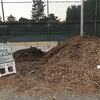 Compost Giveaway・コンポスト(培養土)の無料配布