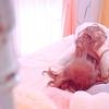 睡眠障害と、むずむず脚症候群?