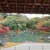 天龍寺に行く!京都紅葉ぶらり巡り 2020年嵐山④