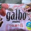 おいしいイチゴチョコ【レビュー】『galbo mini つぶ練り苺』明治