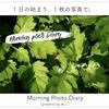 #8 Morning Photo Diary〜アイキャッチ作成方法〜