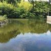 弁天池(千葉県一宮)
