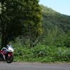 和歌山の森林浴