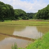 EOSの日_水無月に横浜北端「寺家ふるさと村」に立ち寄りて