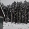 雪、積もりすぎだって。(><)