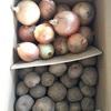 北海道 浦幌町からふるさと納税のお礼品が到着:じゃがいも(キタアカリ)とたまねぎのセット各5kg