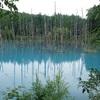 【青い水の絶景】北海道・青い池&美瑛川編