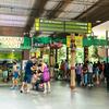 子連れにおススメ!シンガポール動物園