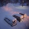 【スキー】年末年始北海道ー15(今日も食べ放題)
