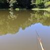 富沢の池35