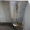 蜂の巣コロリ・天井クロス貼った・キッチンクッションフロア貼った