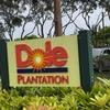 【ハワイ】ドール・プランテーションでパイナップルを満喫♡
