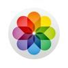 「写真」アプリでの写真管理を効率化する方法