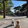 栃木県那須高原へ♪犬連れ1泊2日でGoToトラベル~1