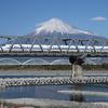 新幹線にApple Watchだけで乗れるようになった話【東海道・山陽新幹線】
