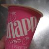 アイスのおもいで ②大好きなアイスたち