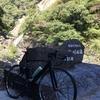 屋久島のサイクリングイベントに参加してきました!