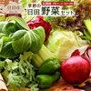 【ふるさと納税】大分県日田市のお野菜定期便が楽しみすぎる