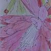 「斉藤和たんぽぽプロジェクト」、vol.10は、サボテンの花です。