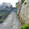 鎌倉 西御門から大覚池ハイキングコース