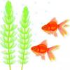 水槽の話【2011年1月】いきなり金魚を持って帰って呆れられた