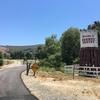 サボテンの洗礼 | カリフォルニアのマウンテンバイク
