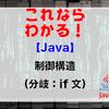 【Java】制御構造(分岐:if文)