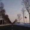 【ご報告】本年度を以て北海道八雲町地域おこし協力隊を退任します。