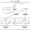 Pythonの周辺環境について整理しながらUbuntuに仮想環境を整える(pipとかvirtualenvとかvenvとか)