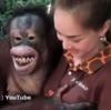 【淫獣】美人飼育員のお姉さんのきょぬーを弄ぶドベスケオラウータンが話題!