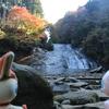 小湊鉄道で行くローカル線の旅! 養老渓谷にて平成最後の紅葉を鑑賞
