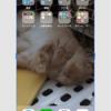 iOS11 PB