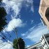 沖縄の天気 那覇の空 セミがとてもうるさいよ!