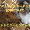 【まとめ】猫のお手入れに関する記事について