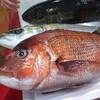 地形で選んだ漁港直送の魚